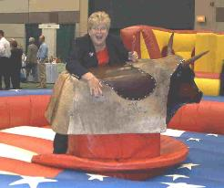 Mechanical Bull rental safe and insured in Michigan