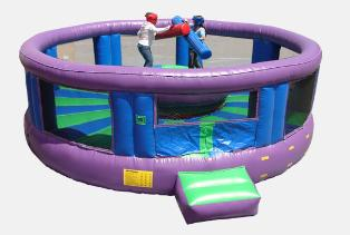 Joust Arena Rock and Roll Game Rental Michigan